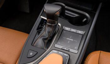 LEXUS UX Hybrid Business 2wd pieno